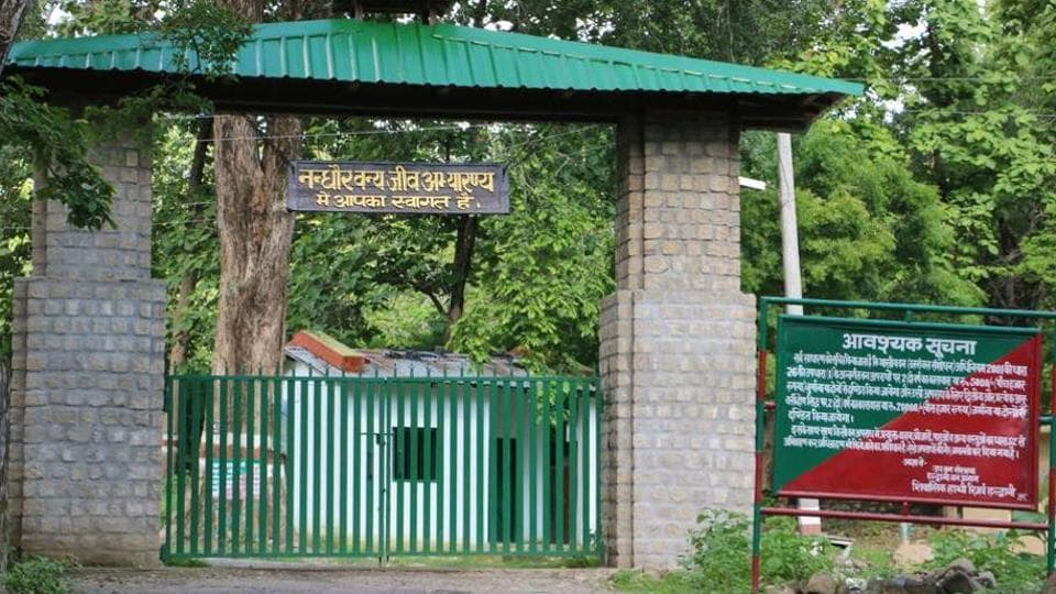 Nandhaur, notified as a wildlife sanctuary in 2008, has 45 tigers.