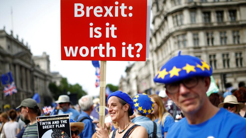 Image result for Brexit not worth it, protester, photos