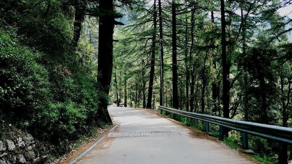McLeod Ganj,McLeodganj,Himachal tourism