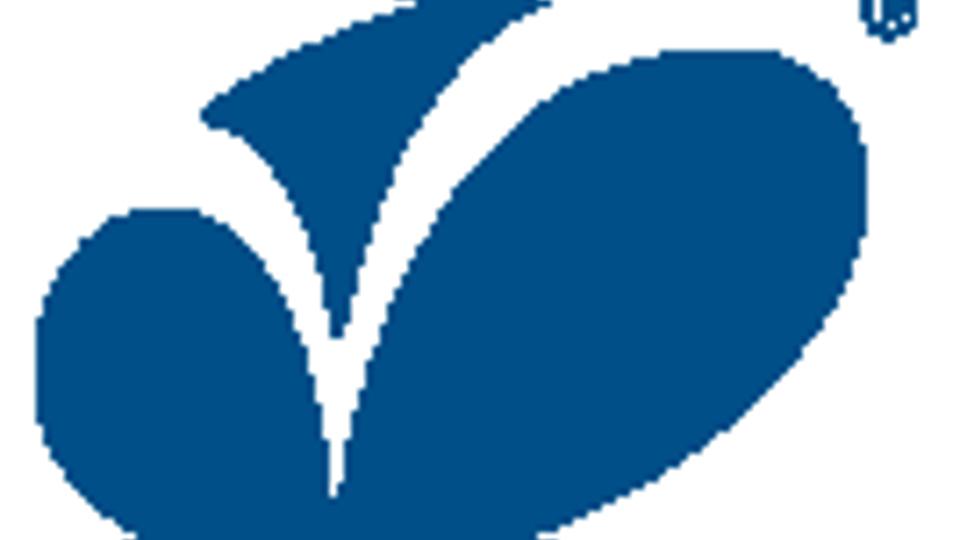 Varroc Engineering IPO,Varroc IPO,Varroc IPO subscription