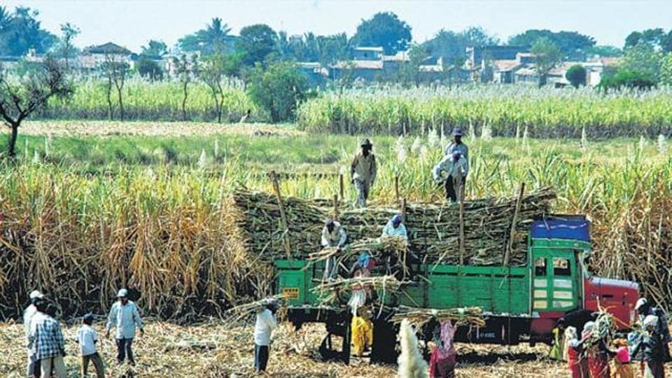 The government hiked price of ethanol, used for doping in petrol, by almost Rs 3 per litre to Rs 43.70 in a bid to cut India's oil import dependence as well as give higher price for sugarcane.