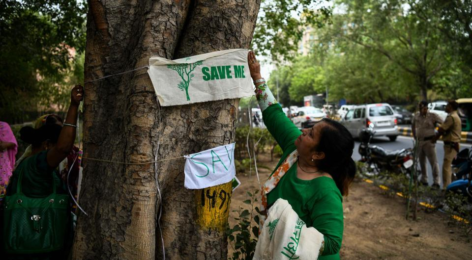 Delhi trees,Tree cutting drive in Delhi,Delhi green cover