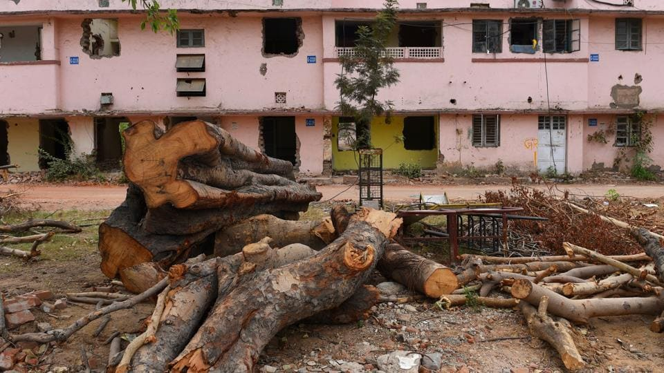 Delhi tree,DDA,Garhi Mandu village