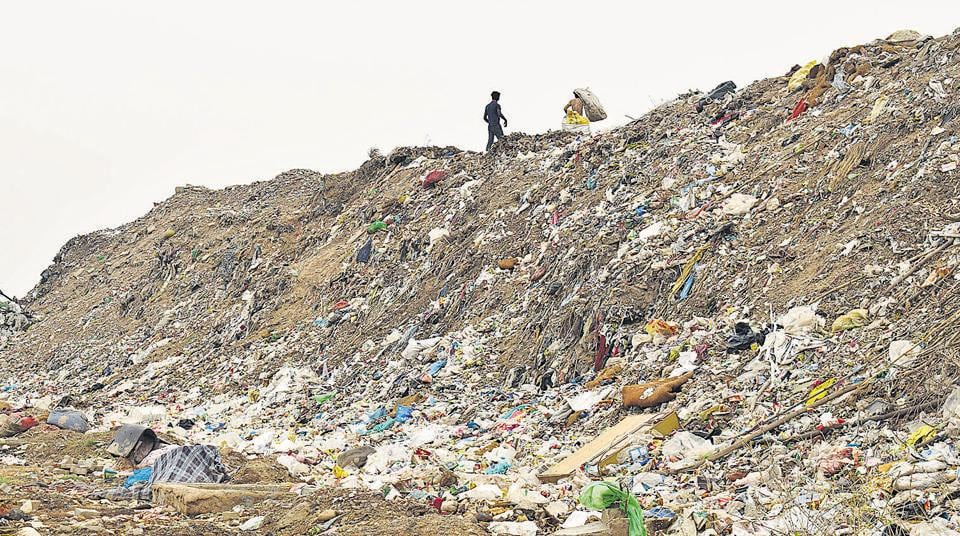 Chandigarh,Waste,Dadumajra