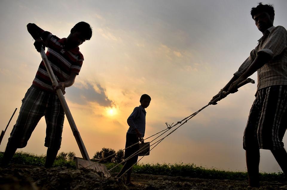 MSP hike,Narendra Modi,Inflation