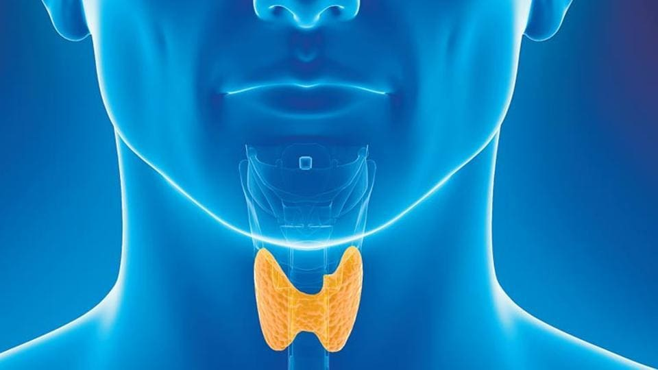 Thyroid problem: Health experts say that thyroid imbalance disorders afflict more women than men.