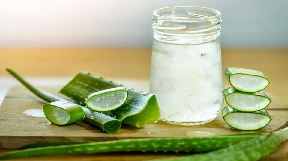 Side Effects Of Aloe Vera Could Be Harmful For You Watch Out For These Signs Fitness Hindustan Times