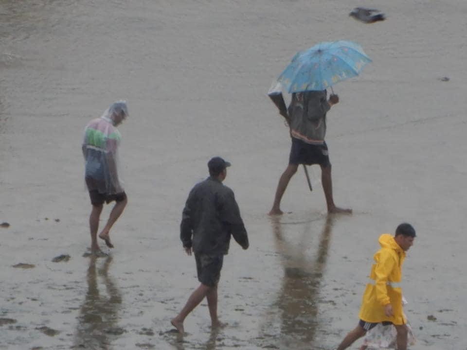 mumbai,flamingo poaching,Borivli
