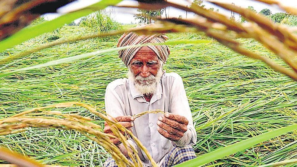 Farm debt waiver,Punjab,marginal farmers