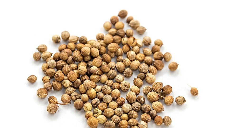 Dry coriander seeds have high levels of antioxidants that help alleviate cholesterol levels. Coriander is also diuretic in nature, which means it enhances the ability of kidneys to flush out toxins, including unwanted cholesterol (Shutterstock)