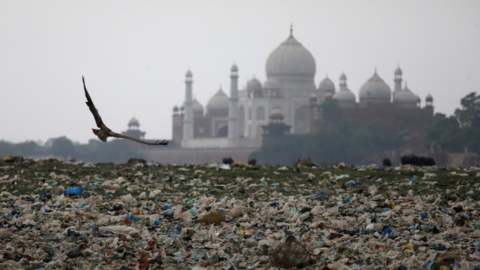 Taj Mahal Turning Yellow Sc Pulls Up Centre Up