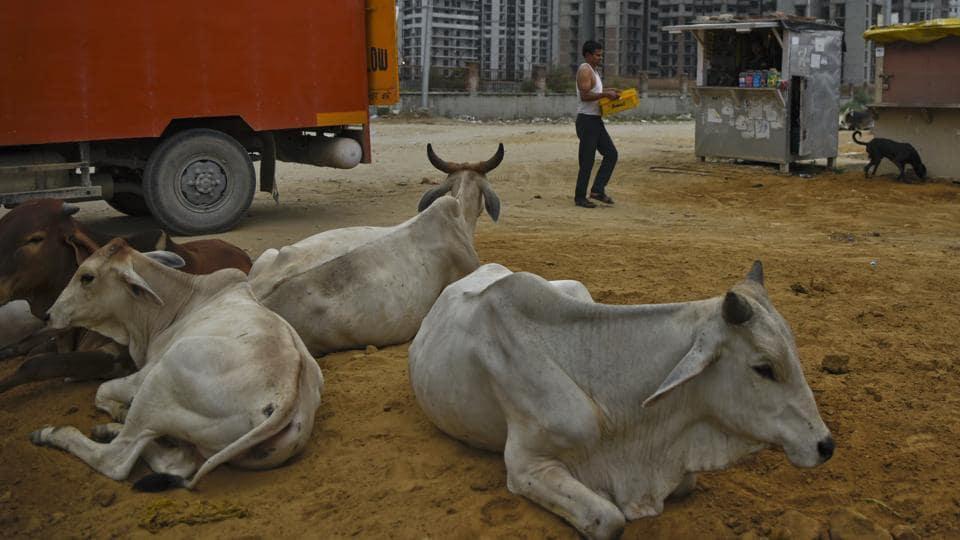 Goa,Beef,BJP