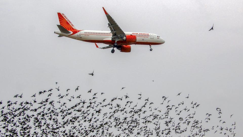 Air India,Saudi Arabia,El Al