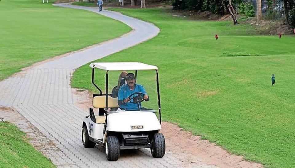 Chandigarh,Chandigarh golf club,stray dogs