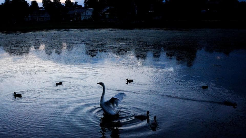 A swan reacts in a pond close to the medieval Trinity Lavra of Saint Sergius in the city Serguiev Posad, near Moscow on July 22, 2018. Lavra is the highest rank of Orthodox monastery, and there are only four in all Russia. (Kirill Kudryavtsev / AFP)