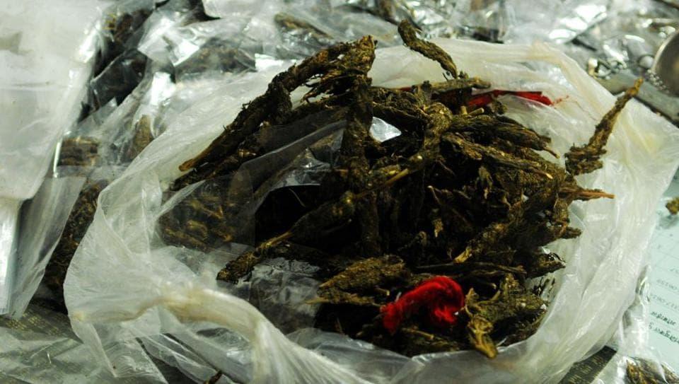 Drug peddlers arrested in Mumbai,Ganja,Marijuana