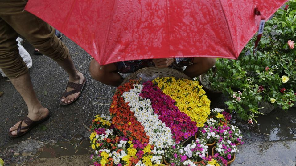 A vendor selling decorative plants sits under an umbrella as it rains in Kolkata. West Bengal on July 29, 2018. (Bikas Das / AP)