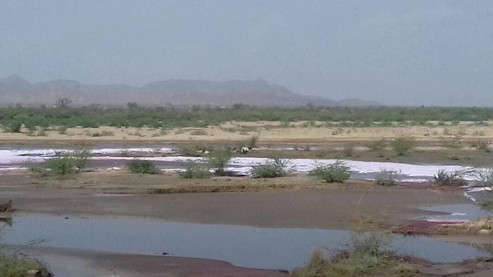 The Rajasthan high court had banned the discharge of treated or untreated effluent in the Luni river in 2012.