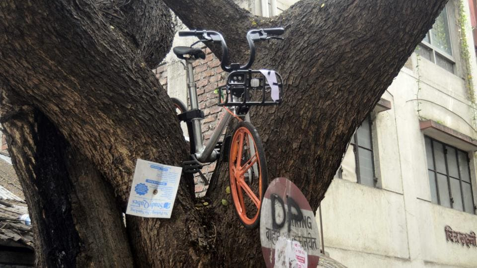 An unknown person decided to ensure that the cycle is in a safe environment and kept it on top of a tree in Sadashiv peth on Tuesday. (Ravindra Joshi/HT PHOTO)