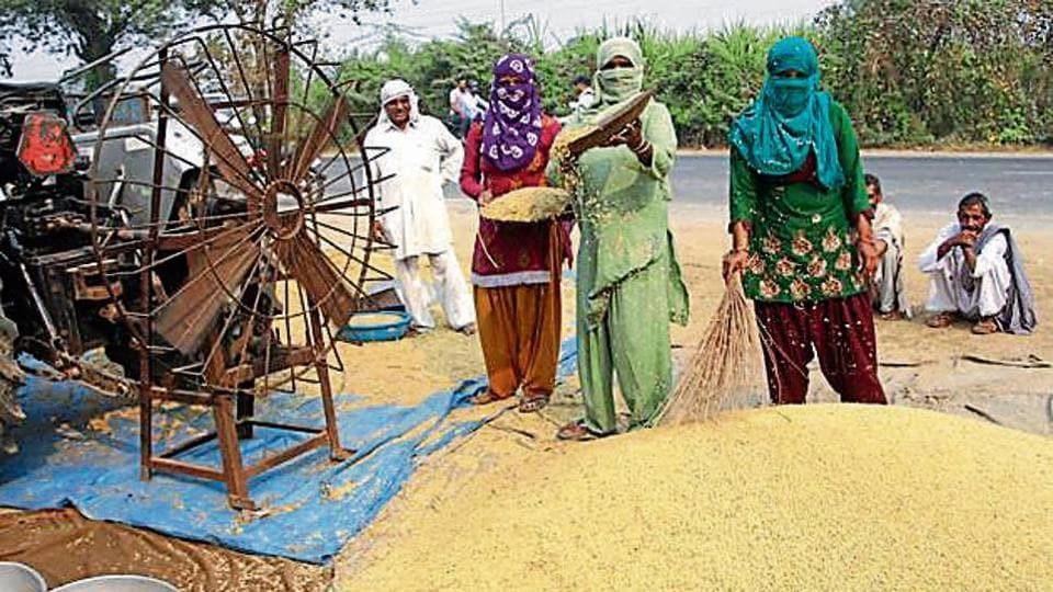 Haryana,arhtiya-farmer,Haryana government