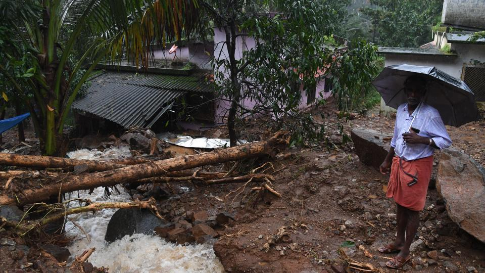 A tree uprooted in  Kerala's Kannur district after heavy rains with flash floods, in Kerala, (PTI)