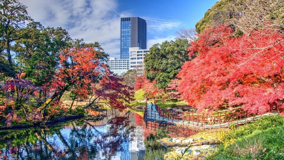 Koishikawa Korakuen Gardens, Tokyo: It is considered to be one of Tokyo's oldest and best gardens. It has reproductions of famous landscapes in miniature, made using stones, trees and manmade hills to replicate Japanese and Chinese scenery.  (Shutterstock)