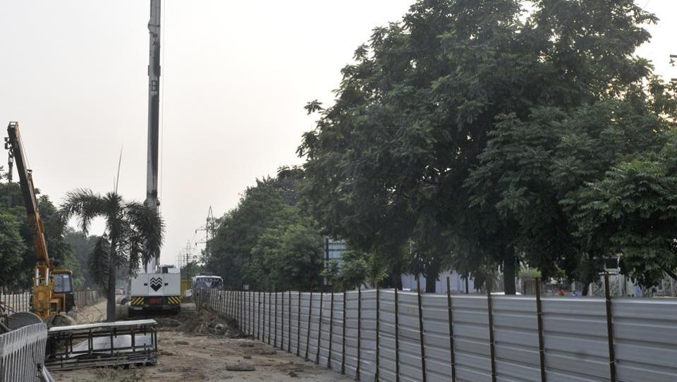 Tree transplantation,Ferozepur Road,Ludhiana