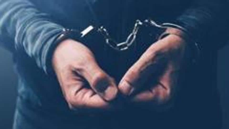 Aditya Birla Hospital,arrest,Patient