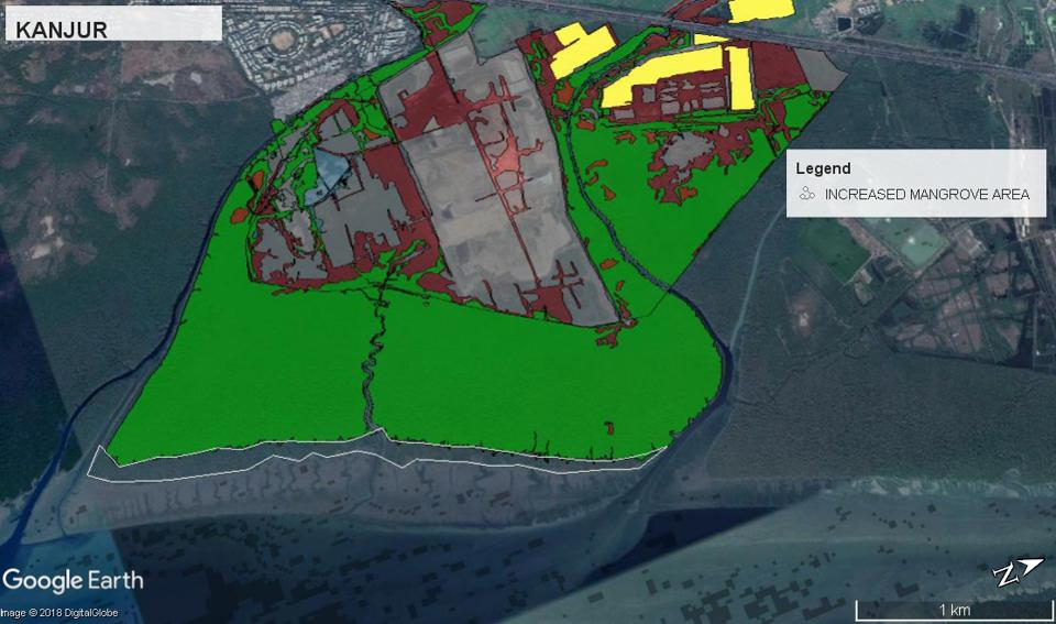 Kanjurmarg in Mumbai saw a 29-hectare increase – the highest among the 11 areas in Mumbai Metropolitan Region