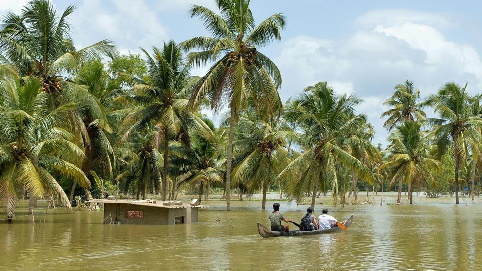 Kerala floods,Kerala floods damage,Kerala floods damage fields