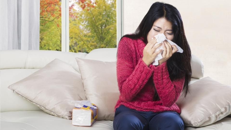 If you are suffering from common cold, you need to add these healthy foods to your diet for relief.  (Shutterstock)