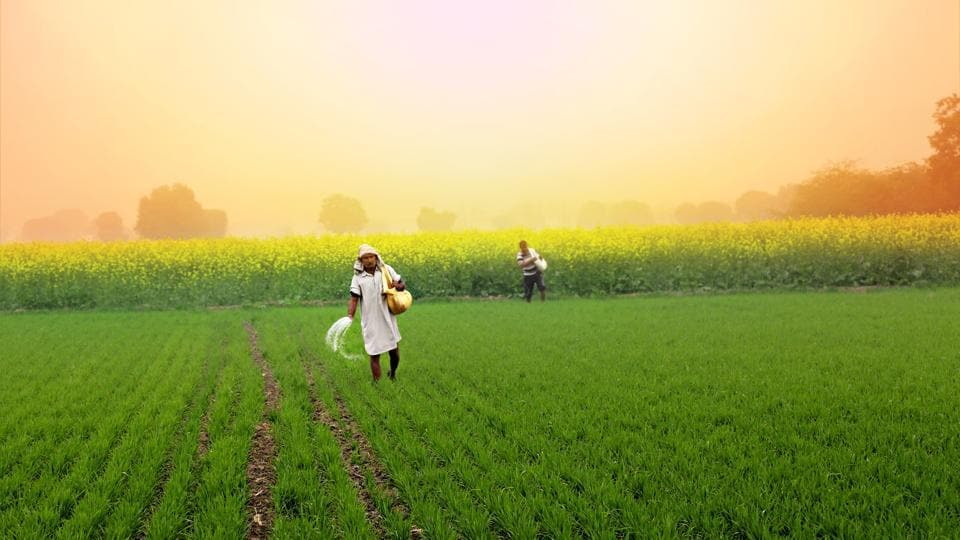 If farmers, the world over, including in emerging economies such as India, are able to benefit from such approaches towards price and yield risk management, they will be able to build a great deal of resilience in their approaches towards agriculture.