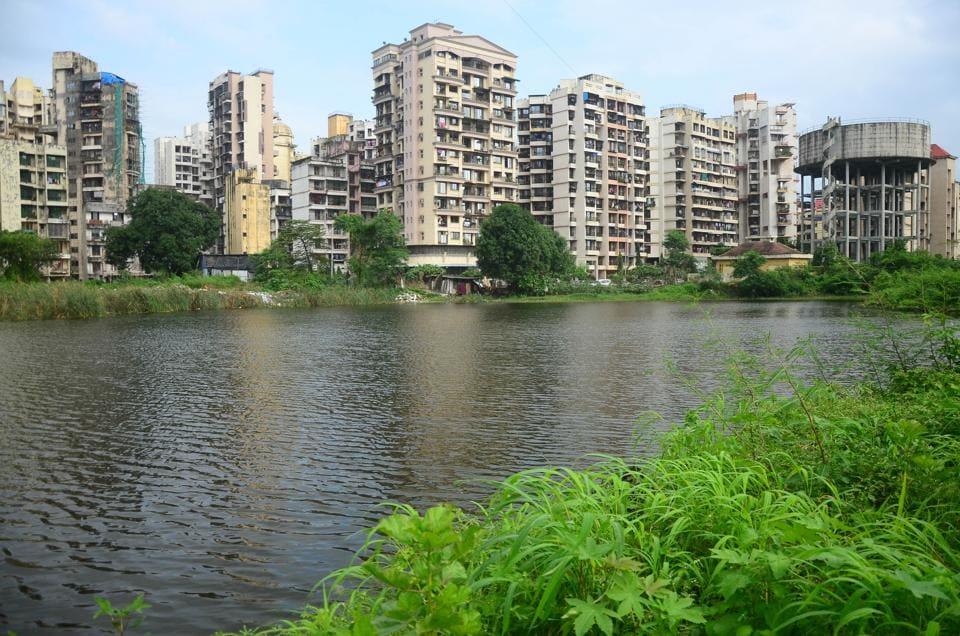 Kharghar pond,Murbi Talao,Kharghar Sector 18