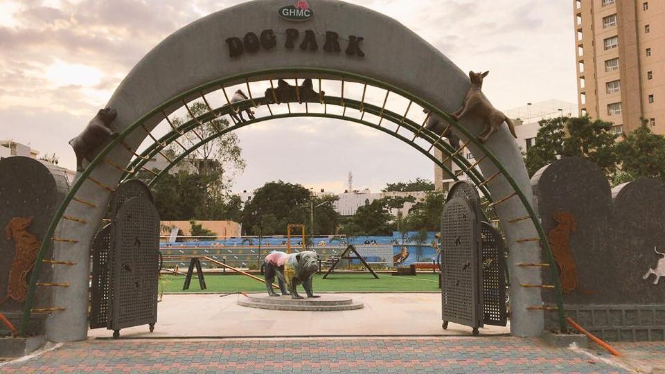 Dog park,Hyderabad,Dogs