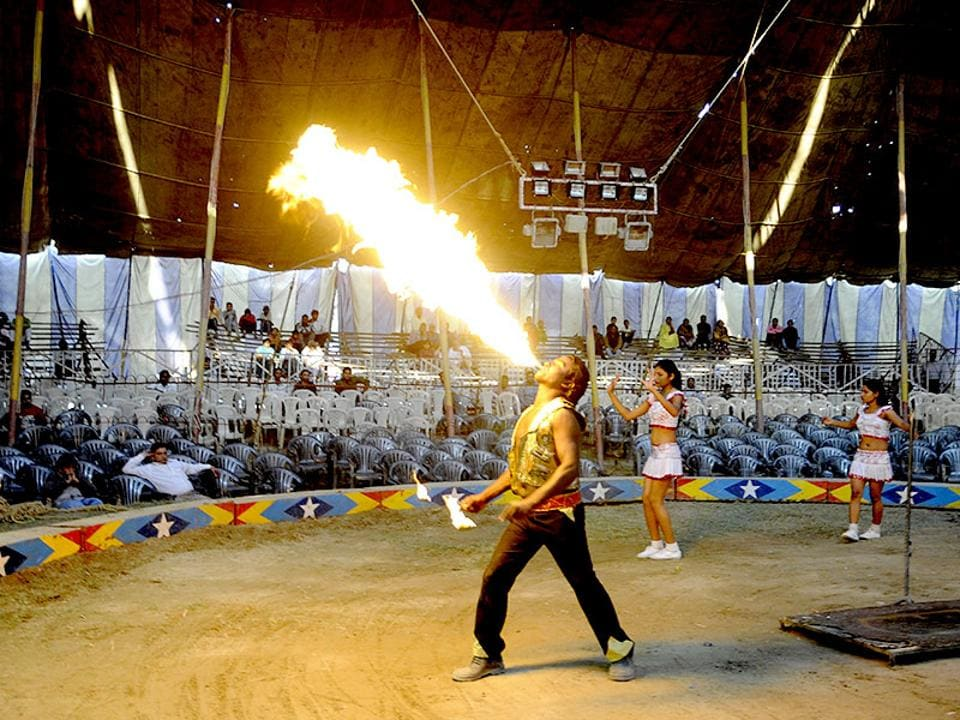 Fire Breathing Circus Flame Show Stock Photo - Image of ...