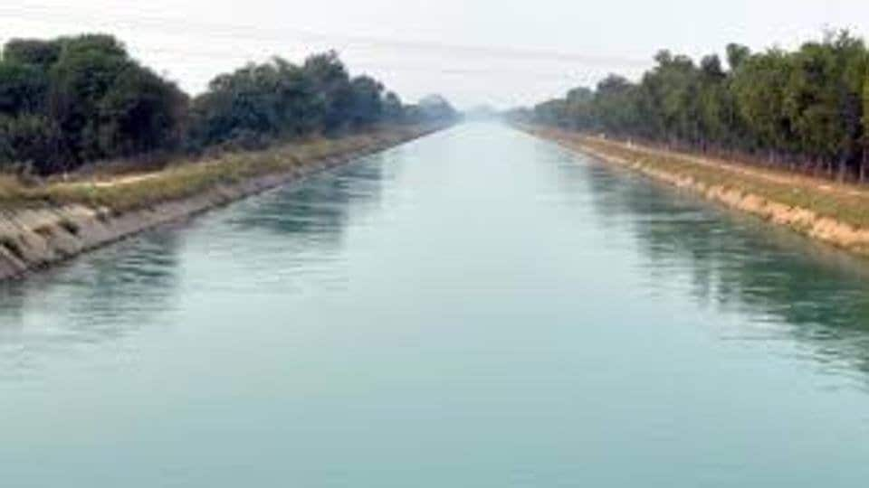 Mentally challenged,mental,Bhakra canal