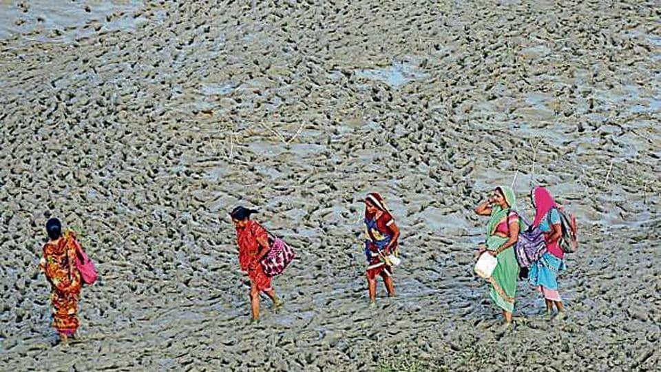 People walk along the muddy banks of River Ganga in Allahabad