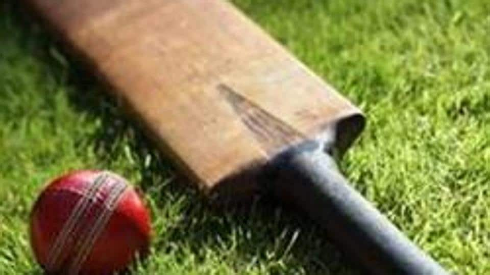 Cricket bat and ball on green grass of cricket pitch
