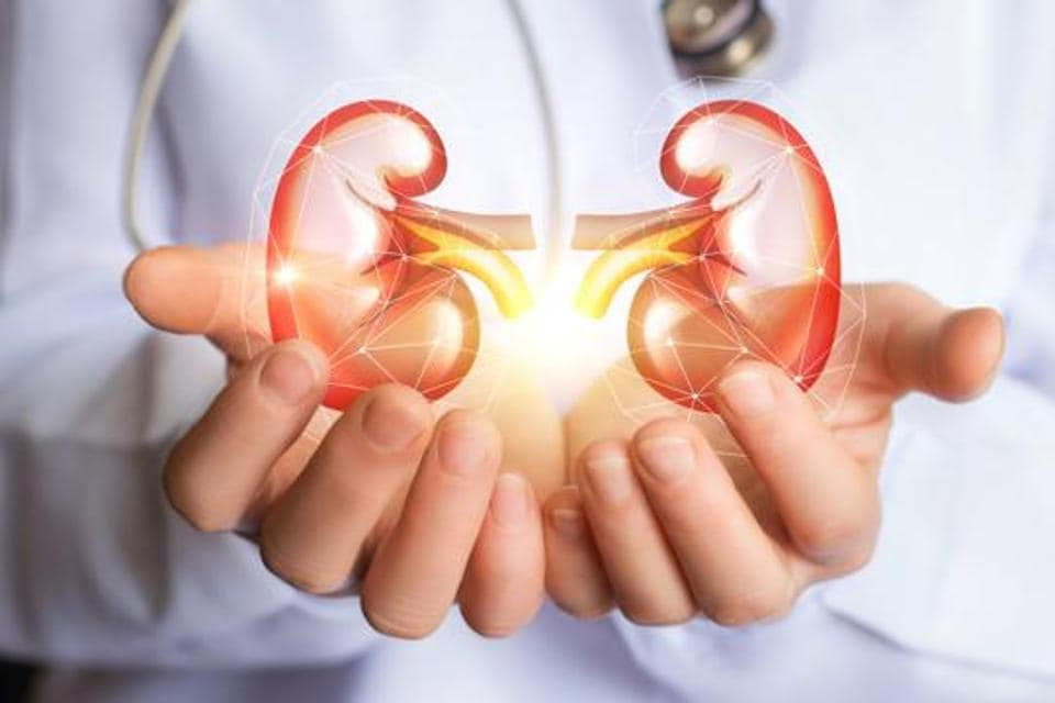World Kidney Day: Pune doctors cite a 15 per cent rise in