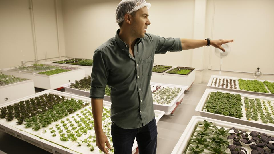 "After raising $6 million and tinkering with autonomous robots for two years,  Brandon Alexander's startup Iron Ox said they are ready to start delivering crops of its robotically grown vegetables to people's salad bowls. ""And they are going to be the best salads you ever tasted,"" said 33-year-old Alexander, a one-time Oklahoma farmboy turned Google engineer turned startup CEO. (Eric Risberg / AP)"
