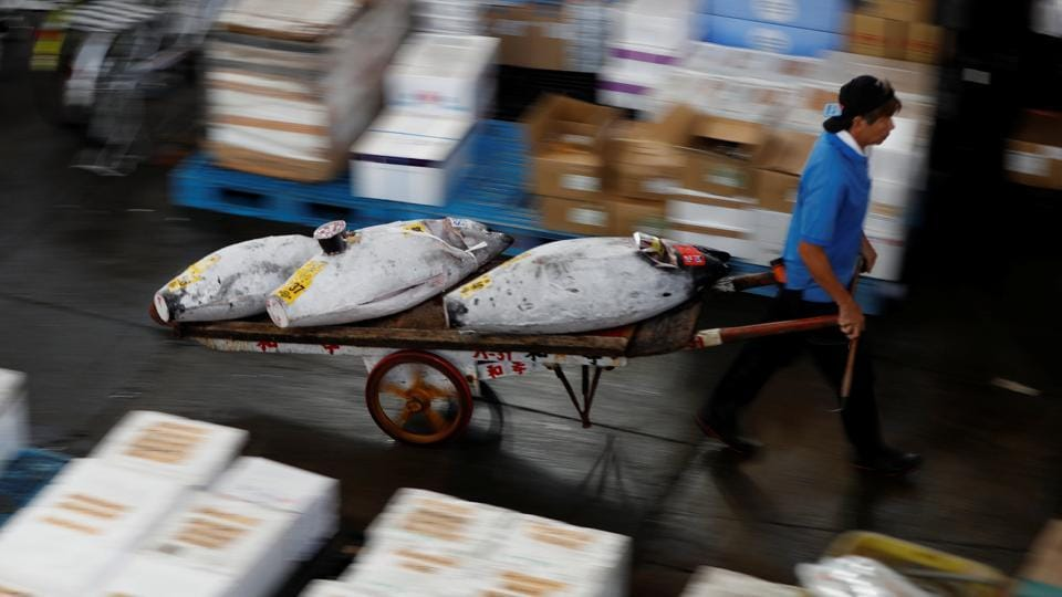 A wholesaler pulls a cart of frozen tuna. Tsukiji feels like a village with its own medical clinics, a bank, library and shops, but with some 40,000 workers and tourists passing through on its busiest days. In its final days, the market is still a frenzy of activity. (Issei Kato / REUTERS)