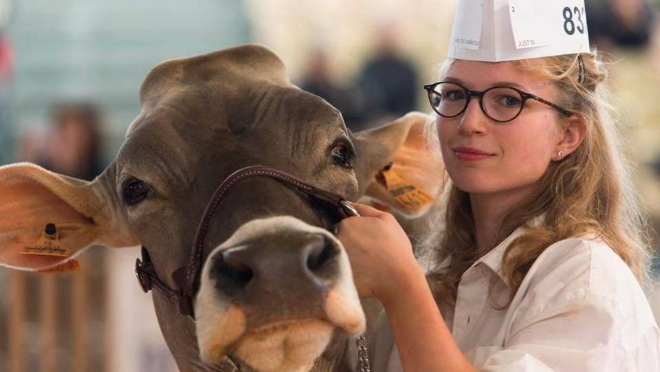 A milkmaid poses with a French breed Brune cow (French Brown), during the third day of the 'Sommet de l'Élevage 2018' Trade Fair in Cournon-d'Auvergne, near Clermont Ferrand in central France. (Thierry Zoccolan / AFP)