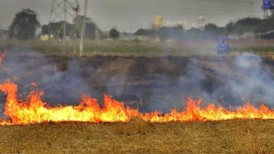 Farmers,government,stubble burning