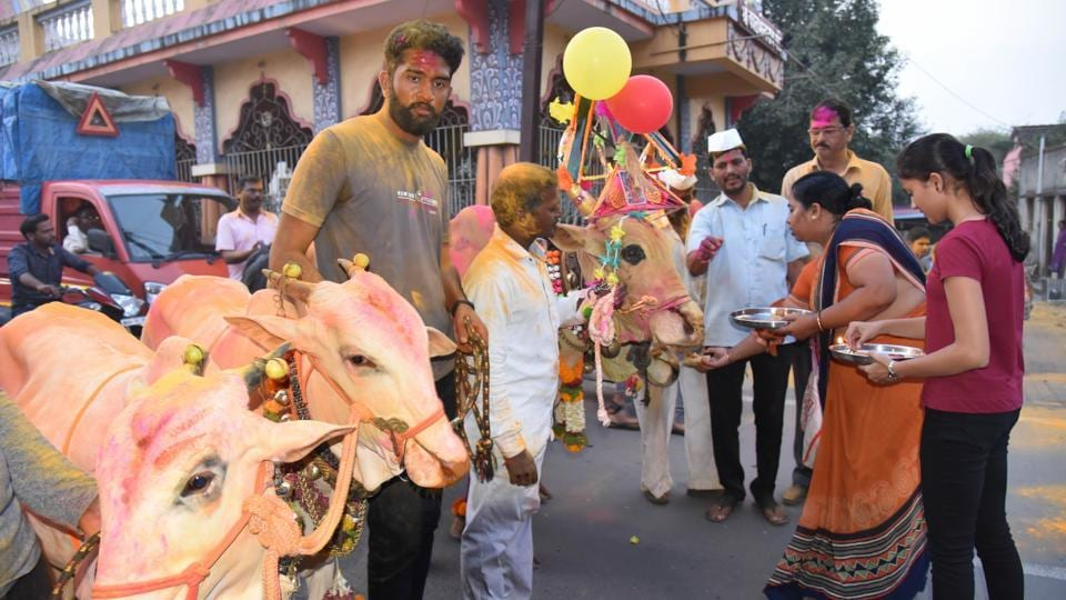 Bail pola was celebrated in most parts of Pimpri Chinchwad in Pune,on September 08. (HT PHOTO)