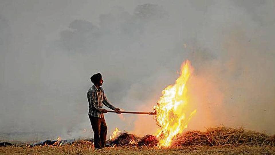 Stubble-burning,punjab,Amritsar