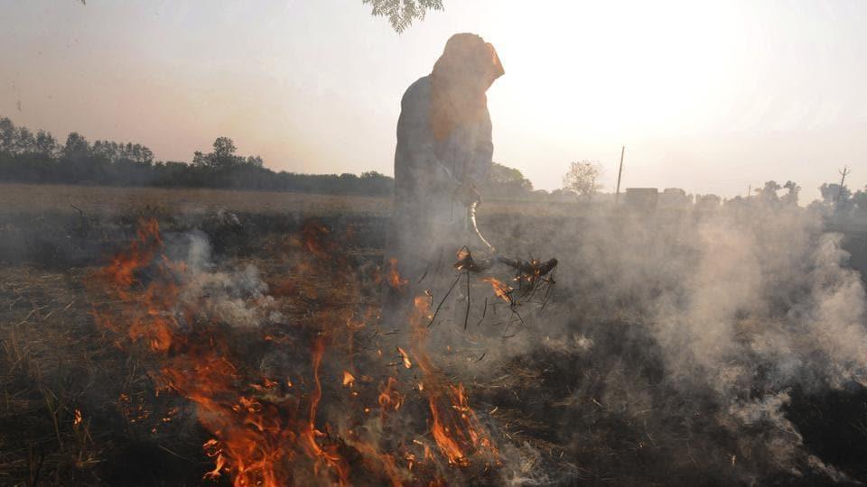 Delhi air quality,Delhi,Crop burning