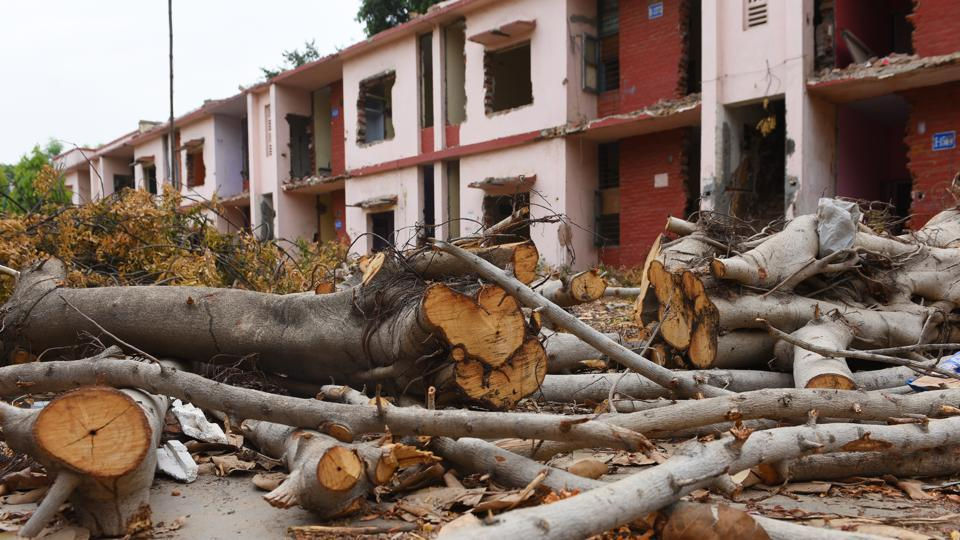 Trees felled for the redevelopment project at Netaji Nagar residential colony, in New Delhi