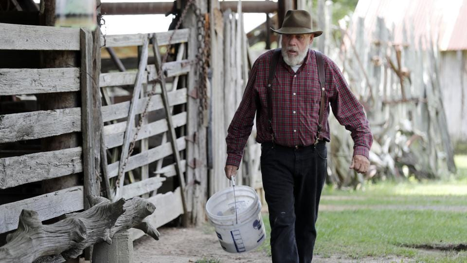 "Bill Frank Brown walks to feed his horses on his farm. The farm has been in Brown's family since 1881 and the livestock there, even longer. Choctaw horses are one strain in a breed called Colonial Spanish horses, often misleadingly referred to as ""Spanish mustang."" These horses are among the world's few genetically unique horse breeds. (Gerald Herbert / AP)"