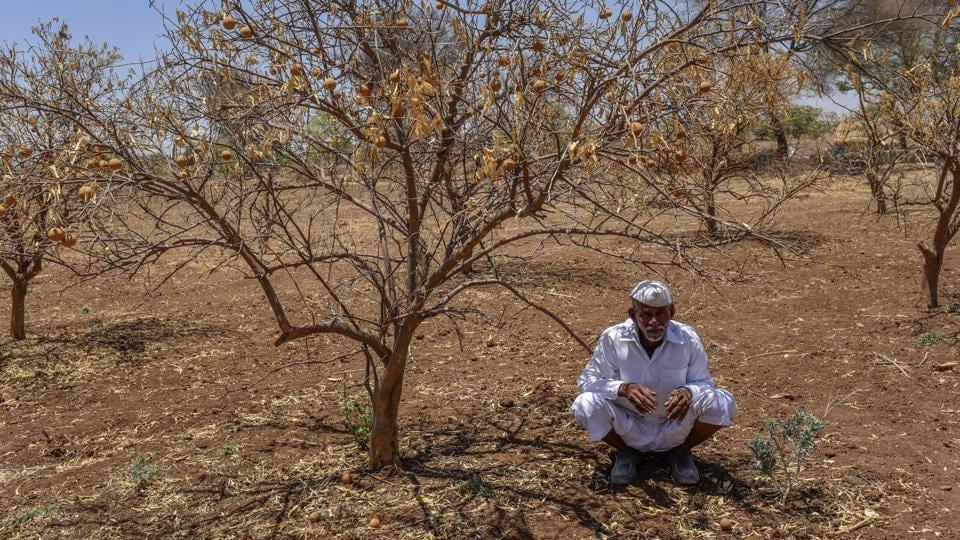 Maharashtra government,October 31,drought