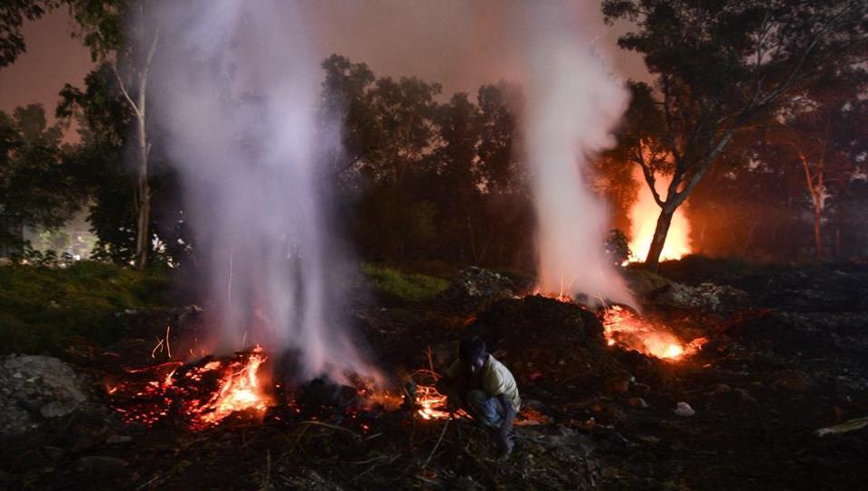 A farmer burns his vegetation in Jalandhar.